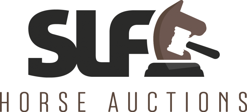 SLF HORSE AUCTIONS